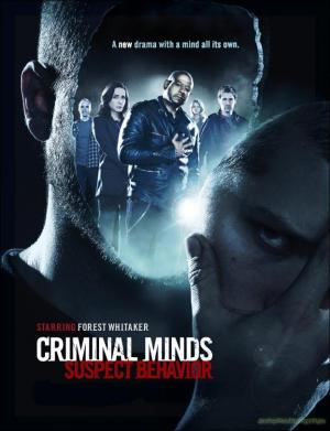 Criminal Minds: Suspect Behavior (TV Series)