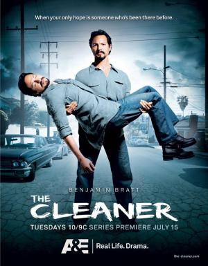The Cleaner (TV Series)