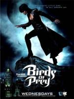Birds of Prey (Serie de TV)