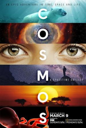 Cosmos: A Space-Time Odyssey (TV Series)