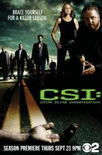CSI: Crime Scene Investigation - Las Vegas (TV Series)