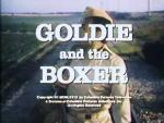 Goldie and the Boxer (TV)