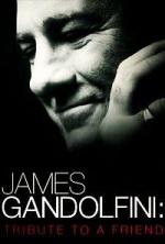 James Gandolfini: Tribute To A Friend (TV)