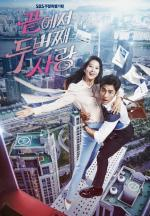 The Second Last Love (TV Series)