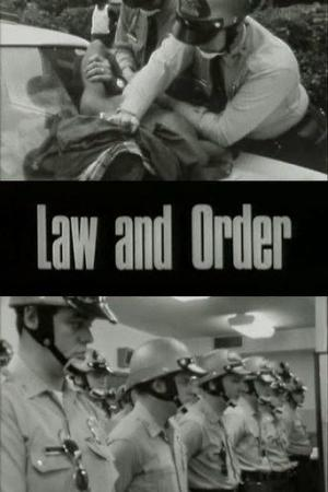 film analysis for law and order  film analysis law and order svu, zebras, 22nd episode and season 10 in the show, law and order svu, there was three concepts that we saw, which was: lying.