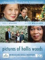 Pictures of Hollis Woods (TV)