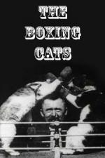 The Boxing Cats (C)