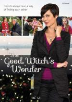 The Good Witch's Wonder (TV)