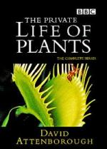 The Private Life Of Plants (TV Series)