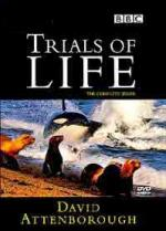 The Trials of Life (TV Series)