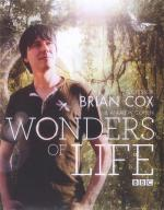 Wonders of Life (TV)