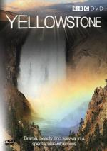 Yellowstone (TV)