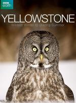 Yellowstone: el gran deshielo (TV)