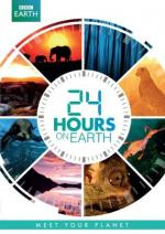 24 Hours on Earth (TV)