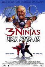 3 ninjas en el parque de atracciones (Tres pequeños ninjas 4)