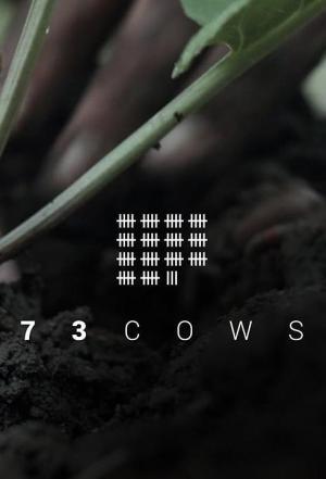 73 Cows (C)