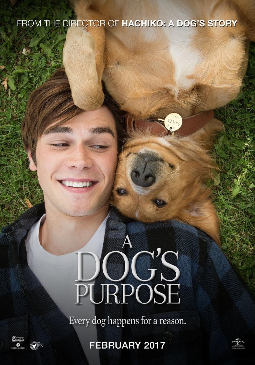 A Dog S Purpose 2017 Filmaffinity