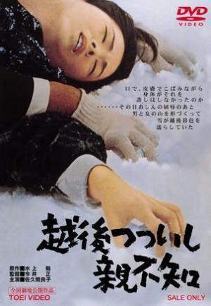 A Story From Echigo