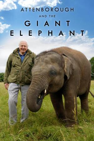 Attenborough and the Giant Elephant (TV)