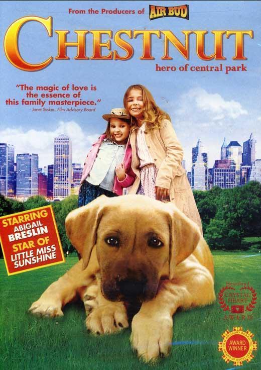 Chestnut Hero of Central Park (2004) Hindi Dual Audio 480p HDRip 400MB