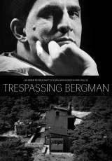 Descubriendo a Bergman