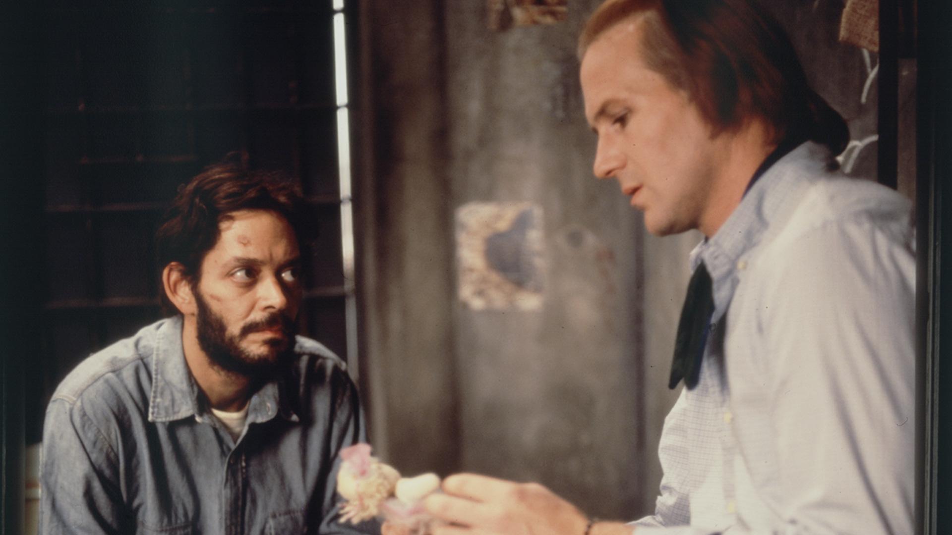 El beso de la mujer araña (1985) - Filmaffinity