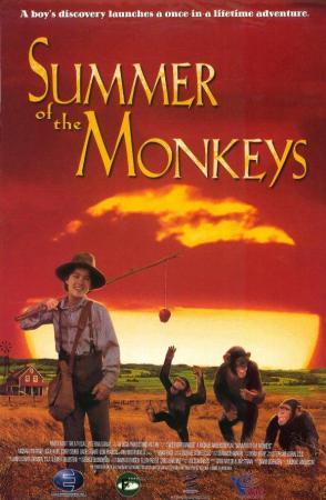 El verano de los monos