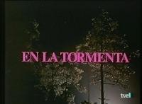 En la tormenta  - Poster / Imagen Principal