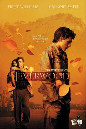 Everwood (Serie de TV)