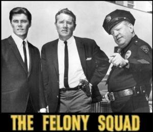 Felony Squad (Serie de TV)