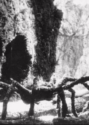 King Kong: The Lost Spider Pit Sequence (C)