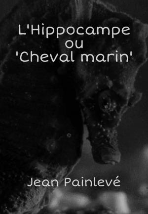 L'Hippocampe, ou 'Cheval marin' (C)
