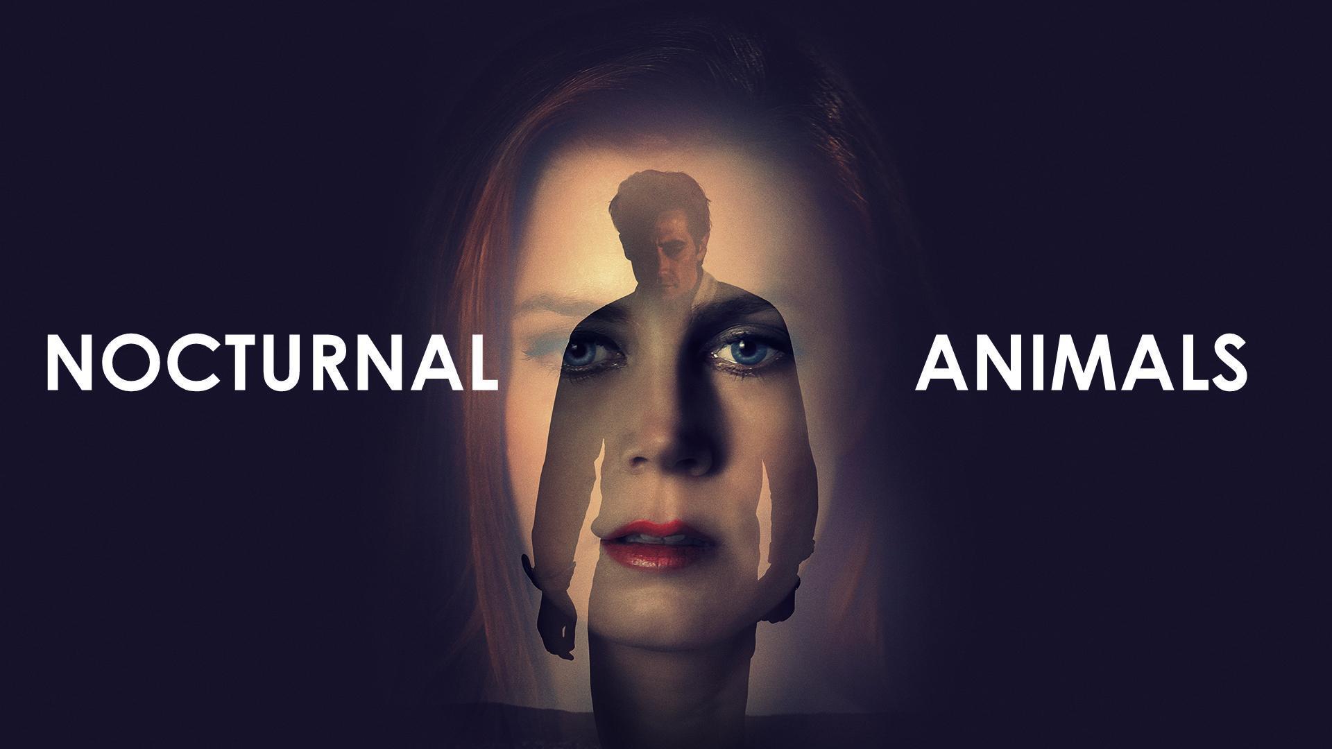 Nocturnal Animals (2016) - Filmaffinity