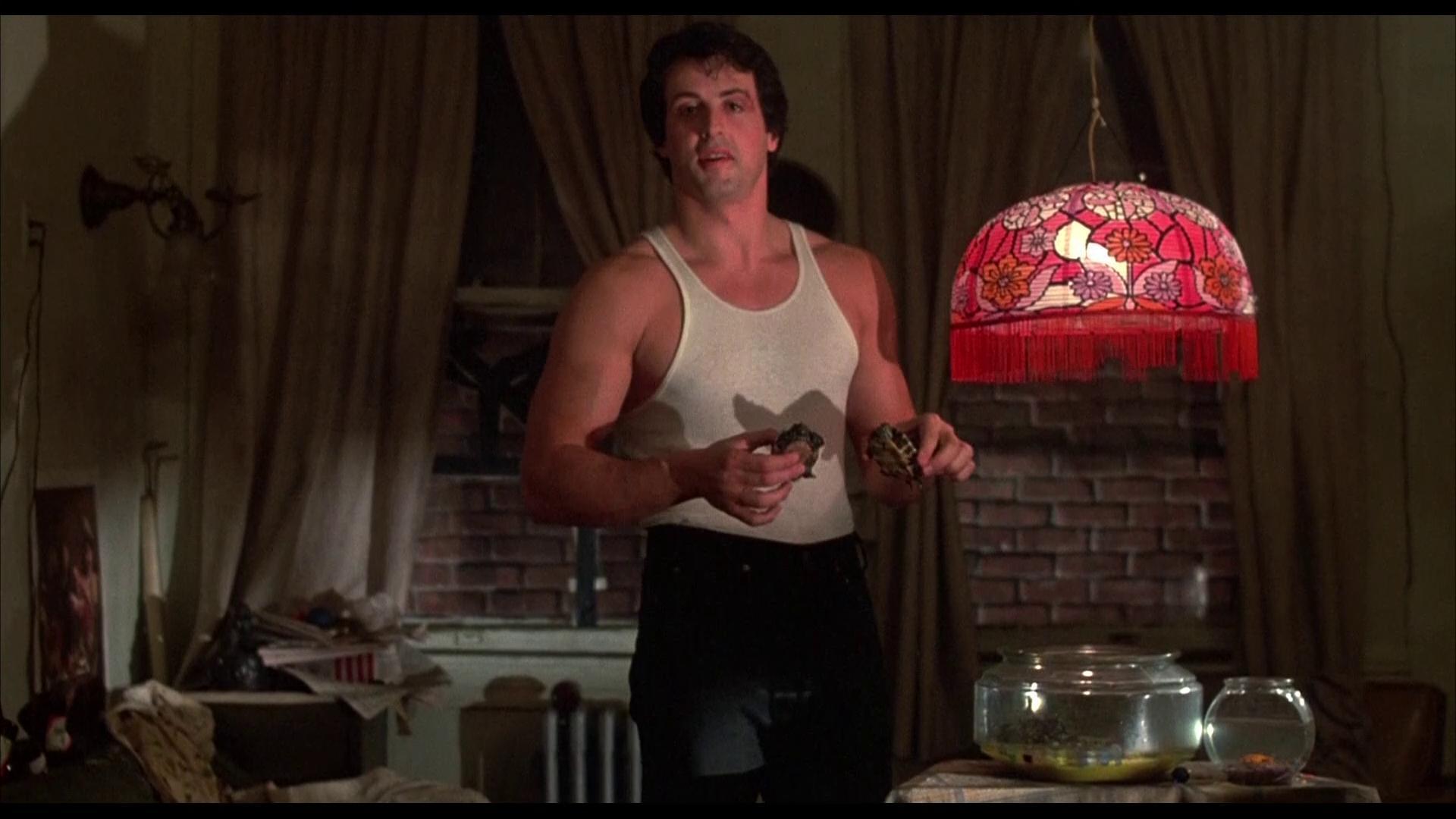 Rocky (1976) - Filmaffinity