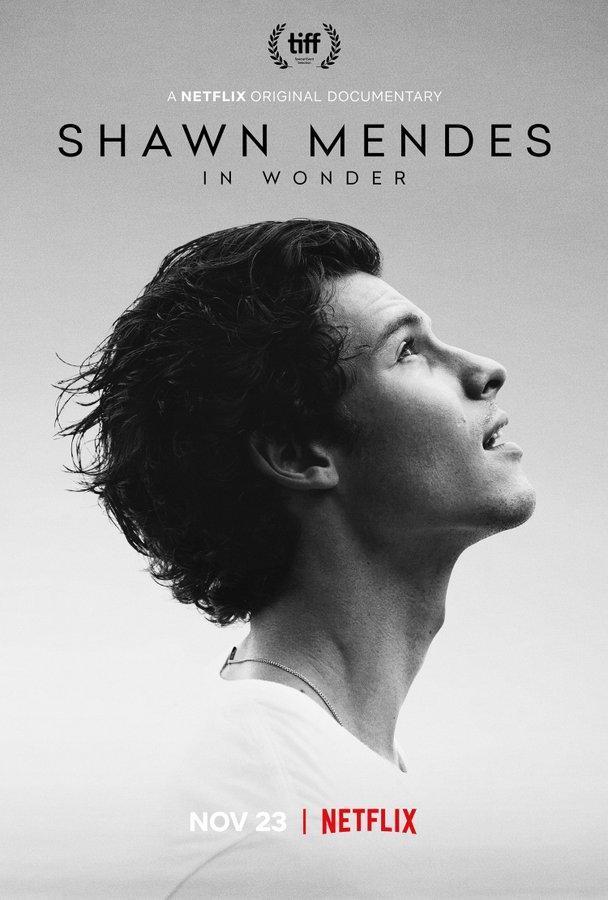 Shawn Mendes: In Wonder (2020) - Filmaffinity