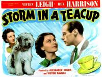 Storm in a Teacup  - Posters