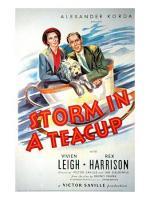 Storm in a Teacup  - Poster / Imagen Principal