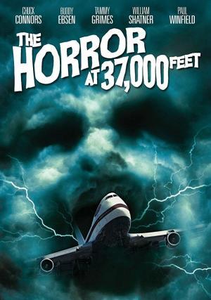 The Horror at 37,000 Feet (TV)