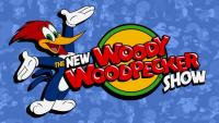 The New Woody Woodpecker Show (TV Series) - Posters