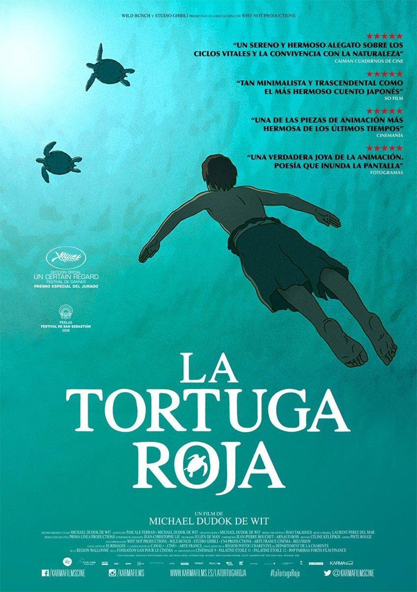 Image Gallery For The Red Turtle Filmaffinity