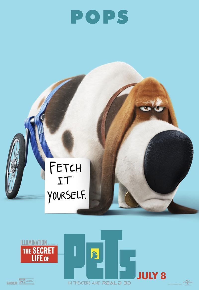 The Secret Life Of Pets 2016 Filmaffinity