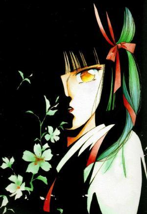 Vampire Princess Miyu (TV)