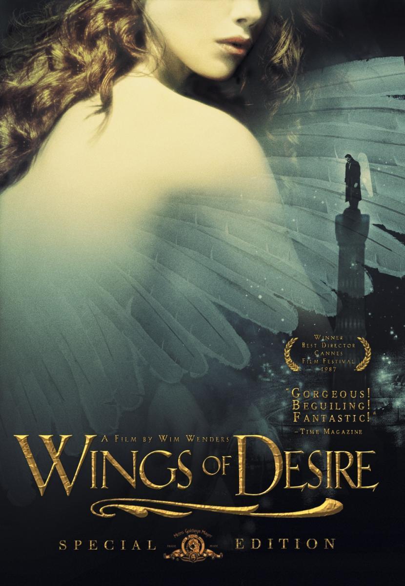 Wings of Desire (horse)