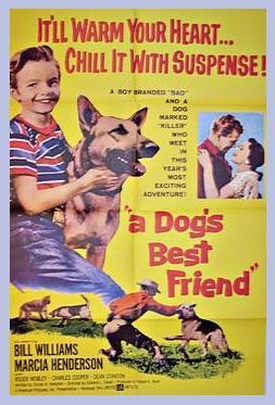 A Dog's Best Friend