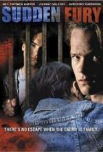 A Family Torn Apart (AKA Sudden Fury: A Family Torn Apart) (TV) (TV)