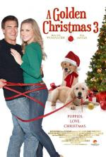 A Golden Christmas 3 (TV)