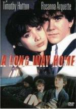 Un largo camino hacia el hogar (TV)