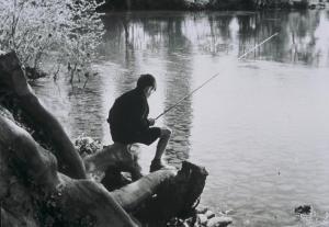À propos d'une rivière (Le saumon atlantique) (C)