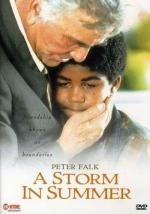 Una tormenta de verano (TV)