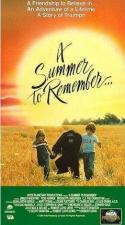 A Summer to Remember (TV)